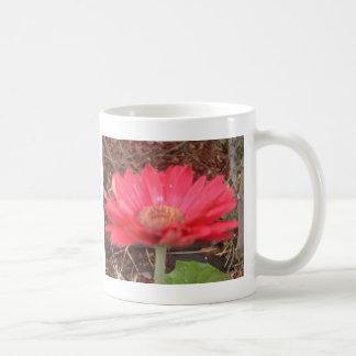 pink lady 3 coffee mug