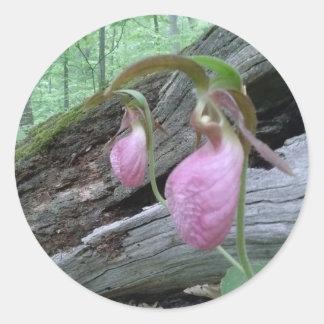 Pink Lady Slipper Classic Round Sticker