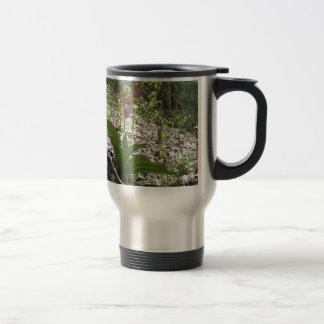 Pink lady slipper Orchid 15 Oz Stainless Steel Travel Mug