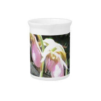 Pink Lady slipper orchid Pitcher