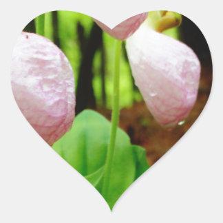Pink Lady Slipper wild Orchid Heart Sticker