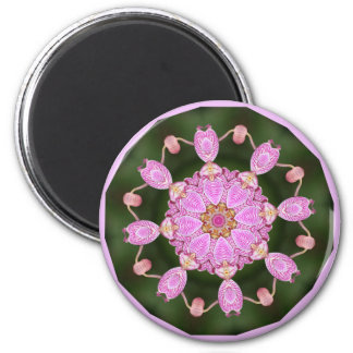 Pink Ladybugs Dancing Queen Bee Pink Orchid 2 Inch Round Magnet