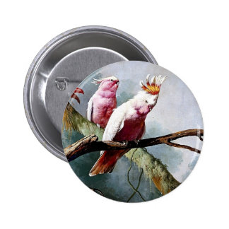 Pink Leadbeater Parrot birds painting Buttons