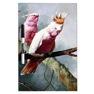 Pink Leadbeater Parrot birds painting Dry-Erase Whiteboard
