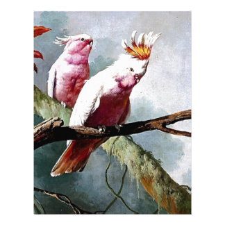 Pink Leadbeater Parrot birds painting Personalized Letterhead
