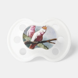 Pink Leadbeater Parrot birds painting Baby Pacifiers