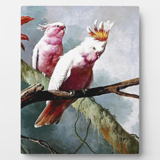 Pink Leadbeater Parrot birds painting Plaques