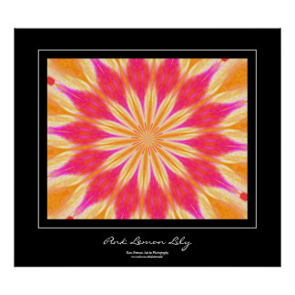 Pink Lemon Lily Black Border Poster