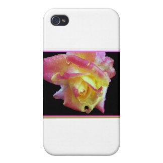 Pink Lemonade Framed Cases For iPhone 4
