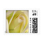 Pink Lemonade Rose Wedding Postage Postage Stamps