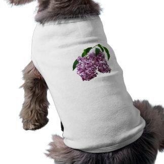 Pink Lilac Duo Pet Clothes
