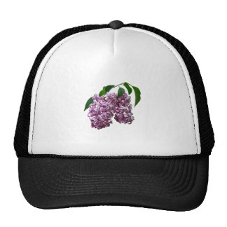 Pink Lilac Duo Mesh Hats