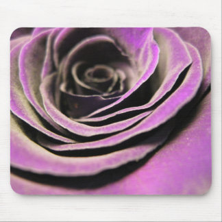 Pink Lilac Rose Mouse Pad