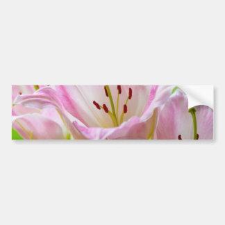 Pink Lilies Bumper Sticker