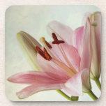Pink Lilies Drink Coasters