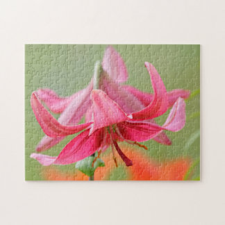 Pink lilly jigsaw puzzles