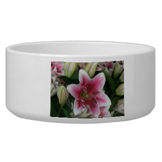 Pink lily bowl