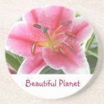 PINK LILY COASTER BY BEAUTIFUL PLANET