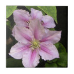 Pink Lily Decorative Tile
