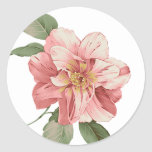 Pink Lily Floral Sticker / Seal