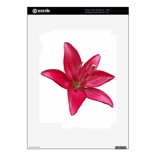 Pink Lily Flower Blossom  Close Up iPad 2 Decal