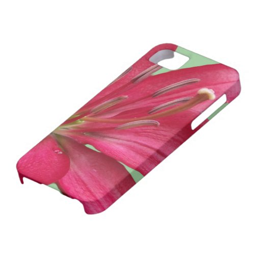 Pink Lily Flower Blossom Close Up Iphone 5 Cover