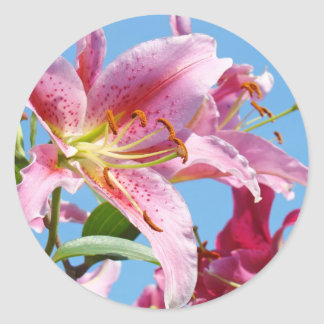Pink Lily Flowers stickers Custom Shapes Lilies