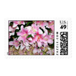 Pink Lily & Hydrangea Bouquet Stamps