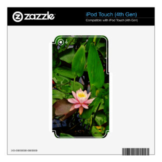 Pink lily lotus water lily flower decals for iPod touch 4G