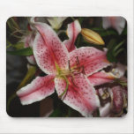 Pink Lily mouse pad