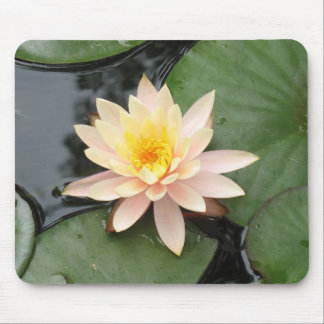 Pink Lily Mousepads
