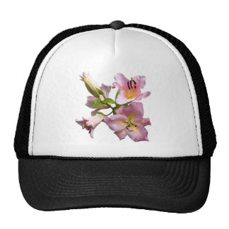 Pink Lily Quartet Hat