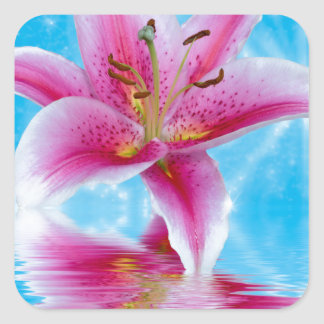 Pink Lily Sparkle Square Sticker