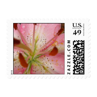 Pink Lily Wedding Postage