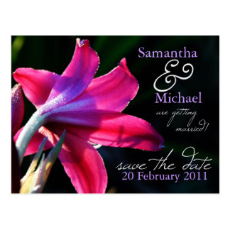 Pink Lily Wedding Save the Date Postcard