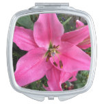 Pink Lily with Raindrops Vanity Mirror