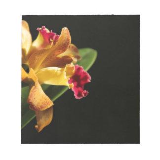 Pink Lipped Cattleya Memo Pads