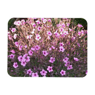 Pink Little Flowers Flexible Magnets