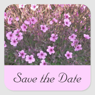 Pink Little Flowers Save the Date Square Sticker