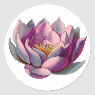 Pink Lotus Blossom Classic Round Sticker
