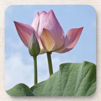 Pink Lotus Coaster