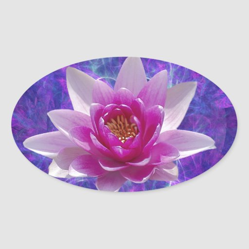 Pink lotus flower and meaning oval sticker