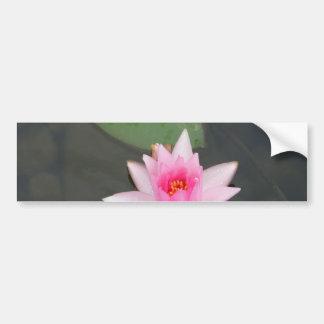 Pink Lotus Flower Car Bumper Sticker