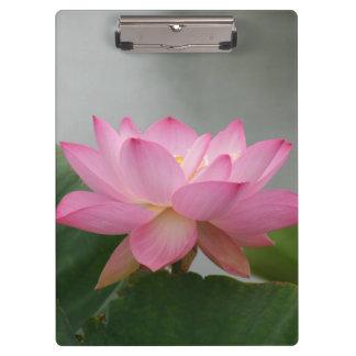 Pink Lotus flower Clipboard
