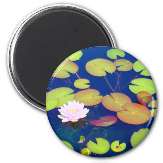 Pink Lotus Flower floating with lily pads on pond Magnet