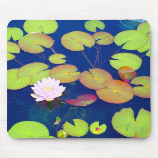 Pink Lotus Flower floating with lily pads on pond Mouse Pad