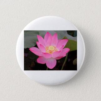 Pink Lotus Flower In Bloom Pinback Button