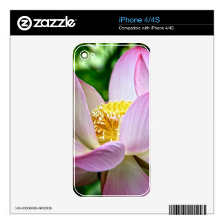 Pink lotus flower iPhone 4S decal