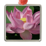 Pink Lotus Flower IV Beautiful Floral Square Metal Christmas Ornament