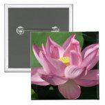 Pink Lotus Flower IV Button